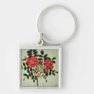 Rosa rugosa, from 'Flora Japonica' Key Ring