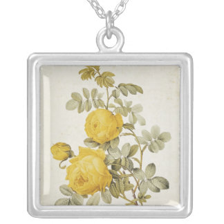 Rosa Sulfurea  from 'Les Roses' Silver Plated Necklace