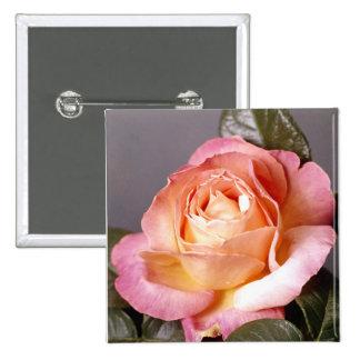Rose 15 Cm Square Badge