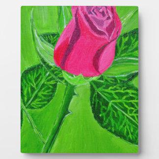 Rose 1a plaque