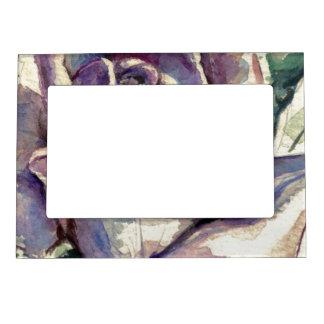 Rose 3 photo frame magnets