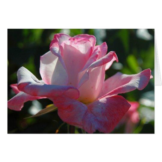 Rose 5 card