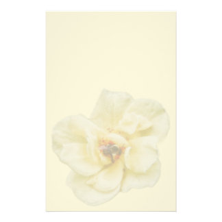 Rose and Bee Stationery
