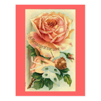 Rose and Butterfly Valentine  (2) Postcard