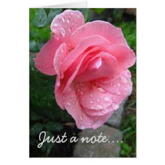 Rose and Dew Note Card