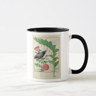 Rose and Polygonatum Mug