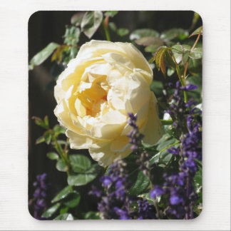 Rose and Salvia Mouse Pads