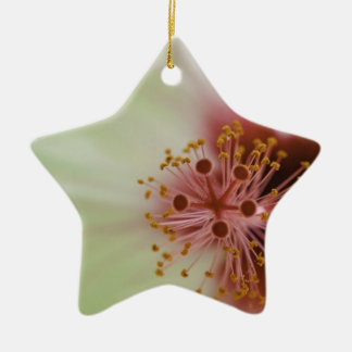 Rose and white christmas tree ornaments