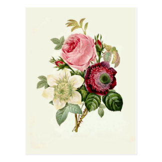 Rose,Anemone and Clematis by Pierre-Joseph Redouté Postcard