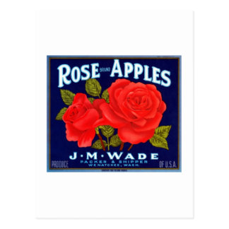 Rose Apples Wenatchee Washington Postcard