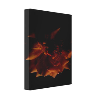 Rose Axis 1 Canvas Print