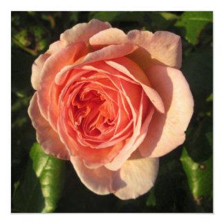 Rose Beautiful Pink Flower 13 Cm X 13 Cm Square Invitation Card