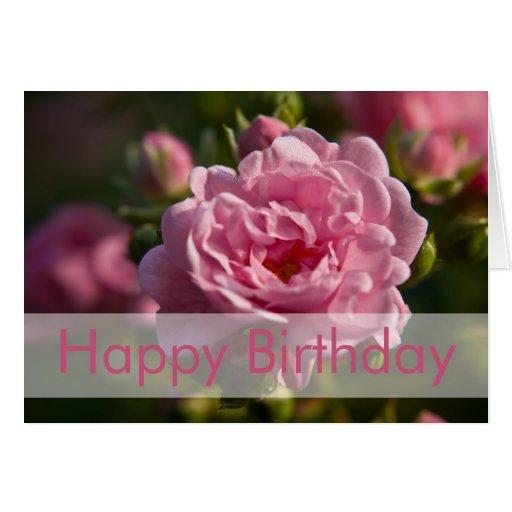 Rose Birthday Card | Geburtstagskarte Rose
