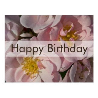 Rose Birthday Postcard Geburtstagskarte Rose