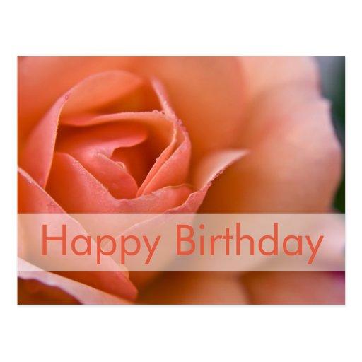 Rose Birthday Postcard | Geburtstagskarte Rose