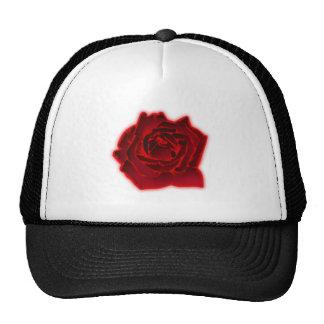 Rose bloom blossom hat