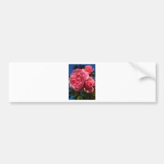 Rose Bloom Bumper Sticker