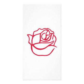 Rose bloom personalised photo card