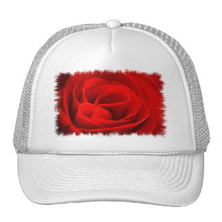 Rose Blossom Baseball Hat