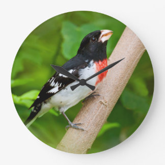 Rose-Breasted Grosbeak (Pheucticus Ludovicianus) Large Clock