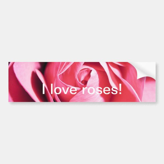 Rose bumper sticker