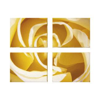 Rose Canvas wrap