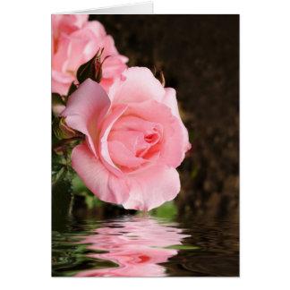 rose card