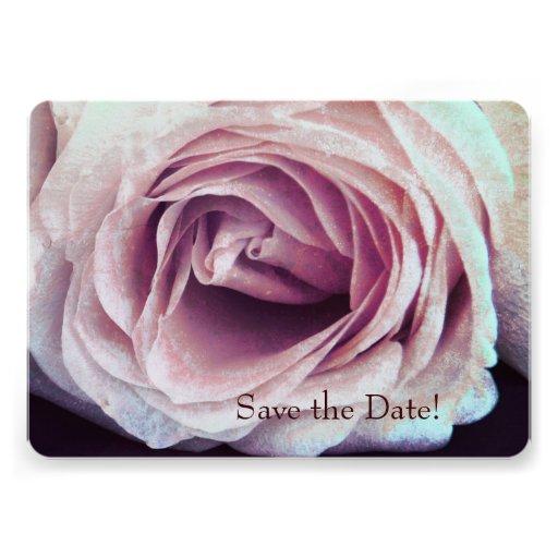 Rose closeup - Save the date Invites
