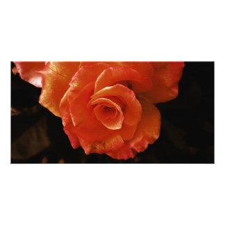 Rose Customised Photo Card
