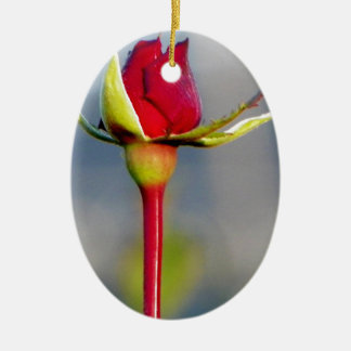 rose ceramic oval decoration
