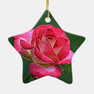 Rose Christmas Ornaments