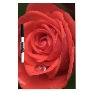 Rose Drop Dry Erase Board