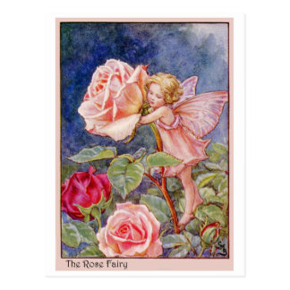 Rose Fairy Postcard