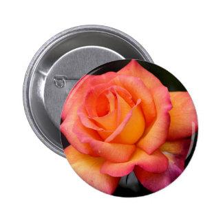 rose flowers flower blossoms petals 6 cm round badge