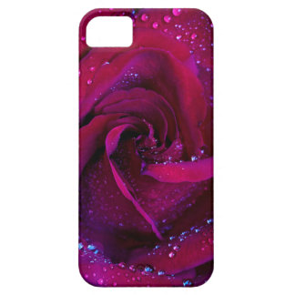 rose flowers flower red water droplets date dance iPhone 5 cases