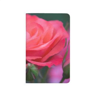 Rose from the Portland Rose Garden Journal