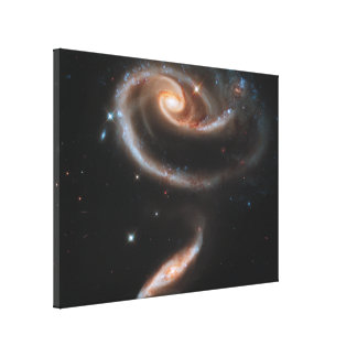 Rose Galaxy Gallery Wrap Canvas