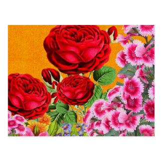 Rose Garden Orange Background Postcard