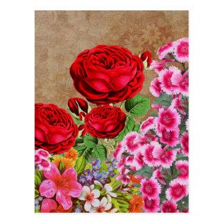 Rose Garden Vintage Postcard