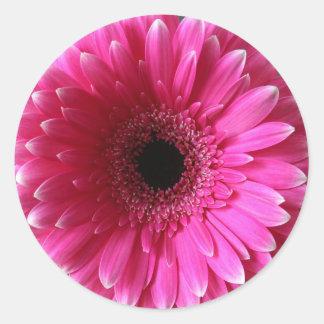 Rose Gerbera Classic Round Sticker