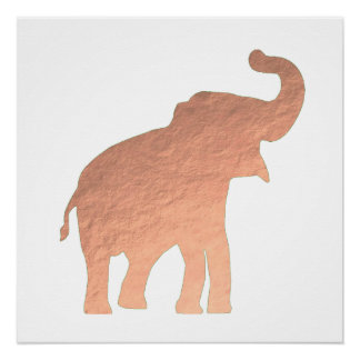 rose gold baby elephant poster