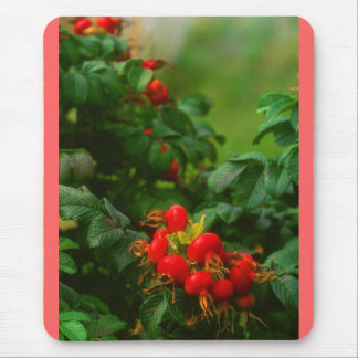 Rose Hipps Mouse Pad