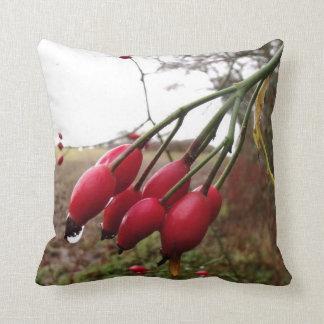 Rose Hips And Rain Cushion