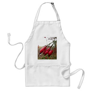 Rose Hips And Rain Standard Apron