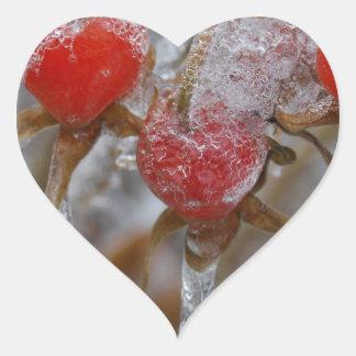 Rose Hips Under Ice Heart Sticker