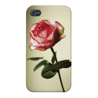 rose iphone4 case iPhone 4/4S case