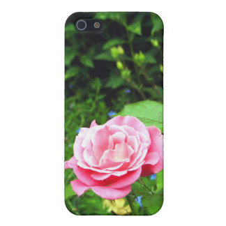 Rose iPhone 5/5S Covers