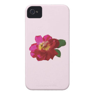 Rose Lovestruck iPhone 4 Covers