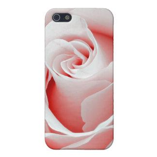 Rose Macro - iPhone 4 Case