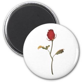 Rose 6 Cm Round Magnet